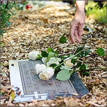 aborted-baby-gravesite